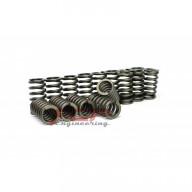Tvrdší ventilové pružiny 2,0 TFSI EA113 / 2,0 TSI EA888 FCP Engineering