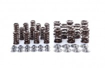 Ventilové pružiny pro 1.8T VW Škoda SEAT AUDI - Integrated Engineering